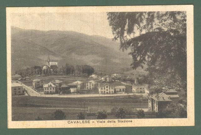 Trentino. CAVALESE, Trento. Viale della Stazione. Cartolina d'epoca viaggiata nel 1928.