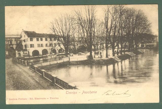 Veneto. TREVISO. Pescheria. Cartolina d'epoca viaggiata 1905