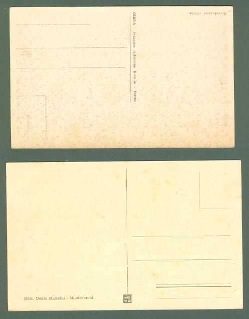 Toscana. TERRANUOVA BRACCIOLINI, Arezzo. Due cartoline d'epoca non viaggiate, circa 1930.