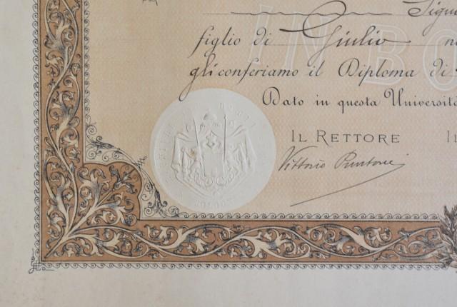 LAUREA in medicina e chirurgia rilasciata nel 1919 dall''Università di Bologna.