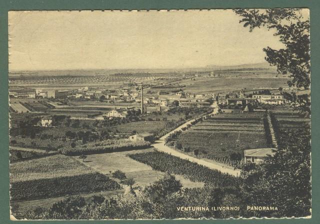 Toscana. VENTURINA, Livorno. Panorama. Cartolina d'epoca viaggiata nel 1951.